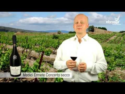 ebrosia Wein Shop - Medici Ermete Concerto Reggiano Lambrusco secco