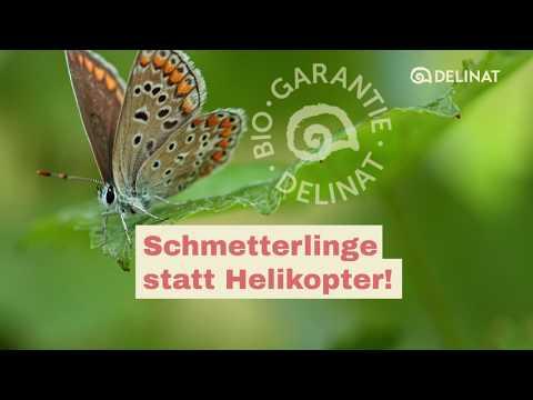 Schmetterlinge statt Helikopter!